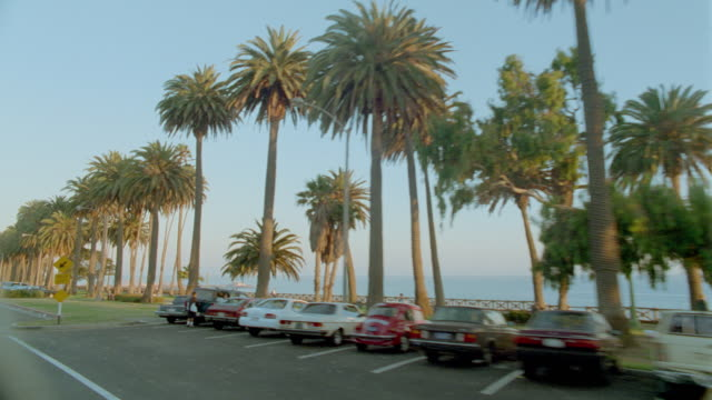 side car point of view past cars + palm trees along coast / ocean in background / santa monica, california - santa monica street stock videos & royalty-free footage