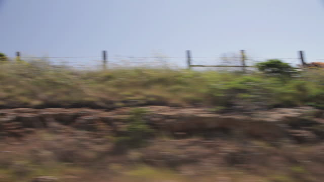 stockvideo's en b-roll-footage met side pov of fields of cows and the pacific ocean along the pacific coast highway - grazen