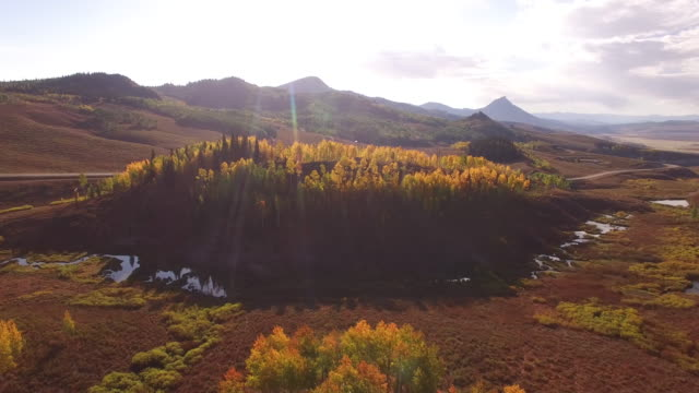 stockvideo's en b-roll-footage met side flight aspen tree reveal, aerial, 4k, 29s, 20of34, aspen trees, foliage, mountains, beautiful colors, changing leaves, colorado, aerial, stock video sale - drone discoveries 4k nature/wildlife/weather drone aerial video - sale