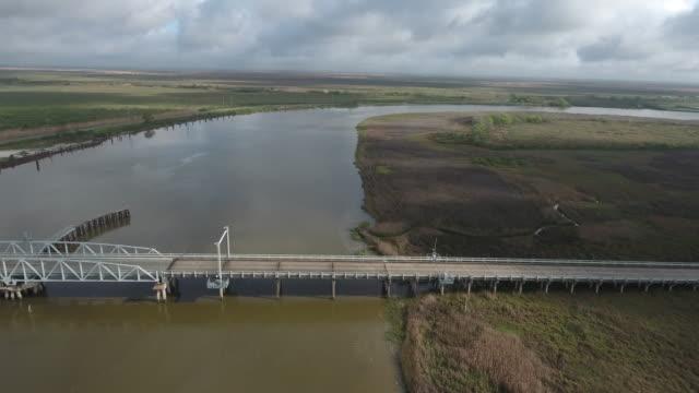 Side flight by bridge - Drone Aerial 4K Everglades, Swamp bayou with wildlife alligator nesting Ibis, Anhinga, Cormorant, Snowy Egret, Spoonbill, Blue Heron, eagle, hawk, cypress tree4K Nature/Wildlife/Weather