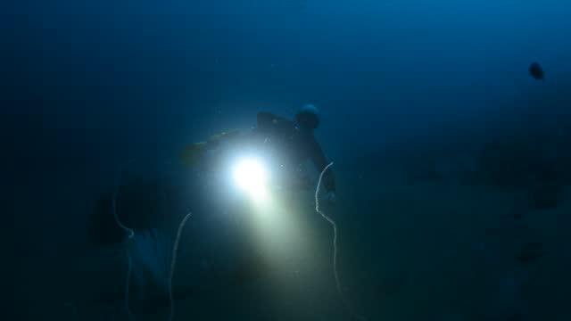 side mount diver. - ゴーゴニアンコーラル点の映像素材/bロール