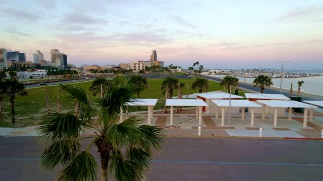 side pan near palm tree in new park near ocean drive in corpus christi , texas , usa aerial drone view - corpus christi texas stock videos & royalty-free footage