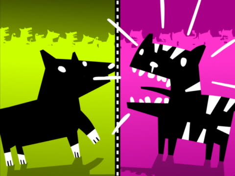 side profile of a dog and a cat fighting - cat blinking stock videos & royalty-free footage