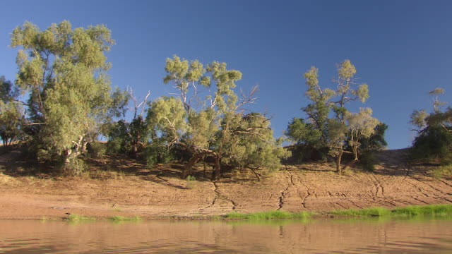 MS Side POV River bank with trees and clear sky / Innamincka, South Australia, Australia