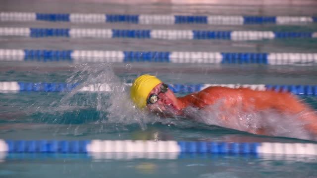 side view following a professional swimmer freestyling down a lane during a swim meet in an indoor olympic sized swimming pool - swimming goggles stock videos & royalty-free footage