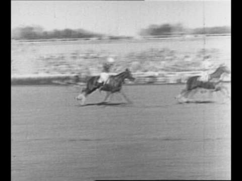 side view humorist will rogers chews gum, intently watches polo match / horses and polo players in polo match between east us and west us / rogers... - hooved animal stock videos & royalty-free footage