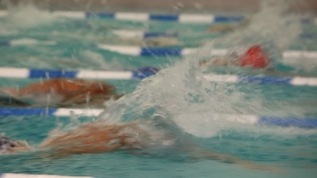 cu. side view of a professional swimmer freestyling down a lane during a swim meet in an indoor olympic sized swimming pool - オリンピック大会点の映像素材/bロール
