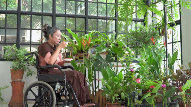side view of beautiful disabled mature wife woman in a wheelchair with happiness, smiling to see a flower with relaxation from drinking a cup of tea. after retirement, she is an environmentalist, florist as hobbies in a greenhouse. - tropical tree stock videos & royalty-free footage