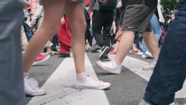 side view of people's legs on shibuya crossing, tokyo - crossroad stock videos & royalty-free footage