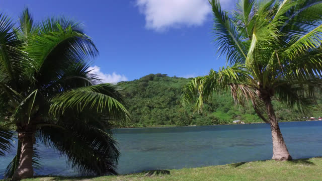 stockvideo's en b-roll-footage met side view of seaside road with tropical vegetation - huahine