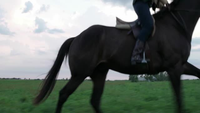 vídeos y material grabado en eventos de stock de side view of woman riding horse on field against cloudy sky - herbívoro