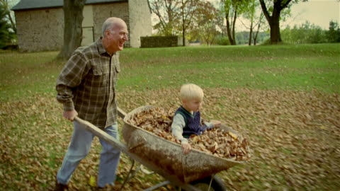 ms, ts, side view, senior man pushing grandson (4-5 years) in wheelbarrow filled with autumn leaves, usa, pennsylvania, solebury - active lifestyle点の映像素材/bロール