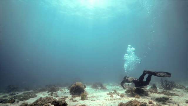 Sidemount scuba diver under water at Balicasag Island in Bohol Philippines