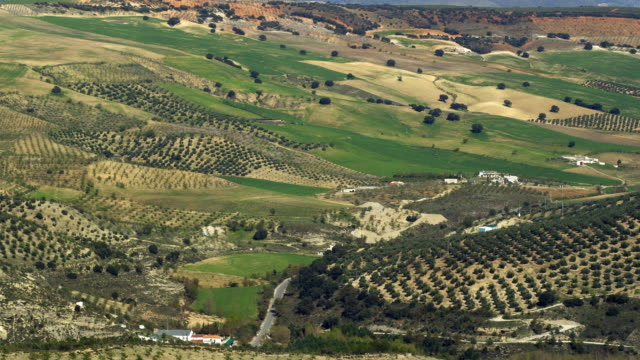 ws tu sierra nevada mountain range and highest peak is mulhacen behind green fields and olive groves / alhama, andalusia, malaga, spain - 2k resolution stock videos and b-roll footage