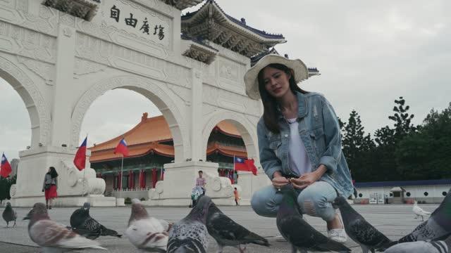sightseeing is always good - chiang kaishek memorial hall stock videos & royalty-free footage