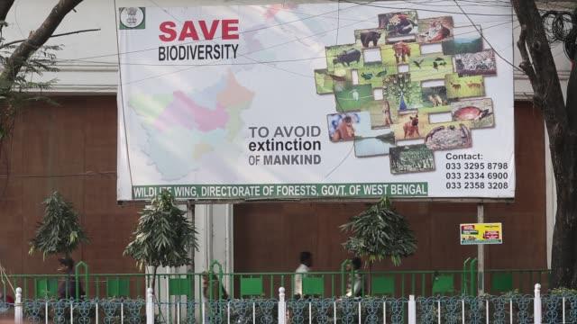 sign about wildlife and biodiversity in calcutta, bengal, india. - indischer subkontinent abstammung stock-videos und b-roll-filmmaterial