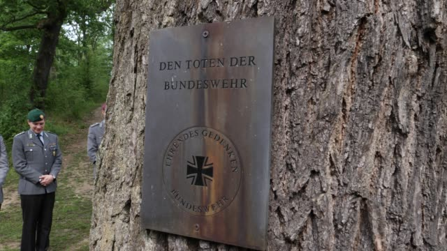 sign at a tree with the inscription for the dead of the bundeswehr at the entrance to the forest of remembrance near potsdam unites the ehrenhaine of... - engraved image stock videos and b-roll footage