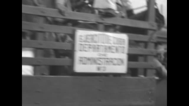 sign on door of car ending with ambulancia armed military man backs out of ambulance door officer prisoners sit inside ambulance / ambulance truck... - hotel nacional stock videos and b-roll footage