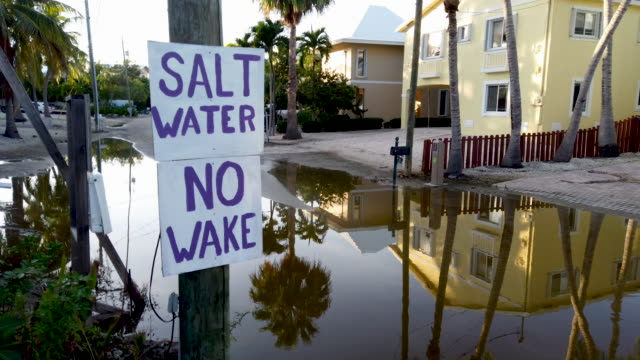 stockvideo's en b-roll-footage met a sign reads' salt water no wake' as ocean water inundates a part of a street on october 22 2019 in key largo florida the water flooded the street as... - the florida keys