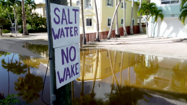 a sign reads' salt water no wake' as ocean water inundates a part of a street on october 22 2019 in key largo florida the water flooded the street as... - king tide stock videos & royalty-free footage