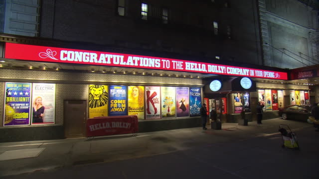 atmosphere signage at bernadette peters' opening night of hello dolly on broadway on february 22 2018 in new york city - バーナデット ピータース点の映像素材/bロール