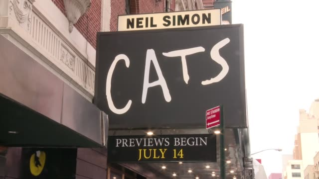 atmosphere signage at broadway revival of andrew lloyd weber's cats opening at neil simon theatre on july 31 2016 in new york city - andrew lloyd webber stock videos & royalty-free footage