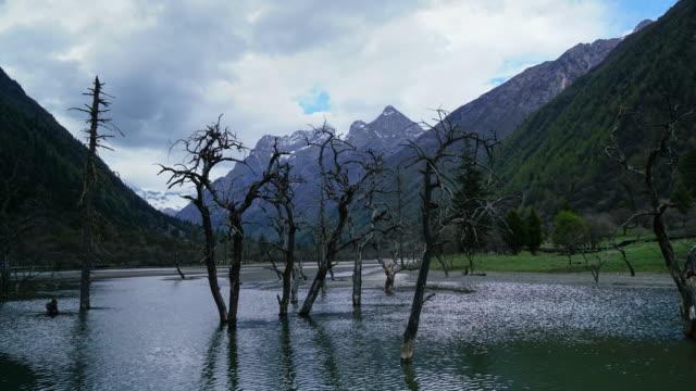 Siguniang nationaal park de provincie van Sichuan