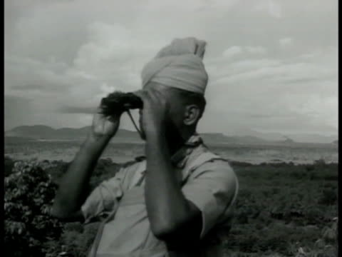 sikh soldiers in south pacific covering net w/ leaves looking out over field. sikh soldier scoping area w/ binoculars. sikh soldiers firing guns from... - pazifikinsulaner stock-videos und b-roll-filmmaterial