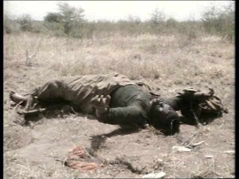stockvideo's en b-roll-footage met story 2: weapons trade and african conflicts:; gs 28078224 somalia : dead mutilated body on ground dead body on ground side soldiers with guns in... - war and conflict
