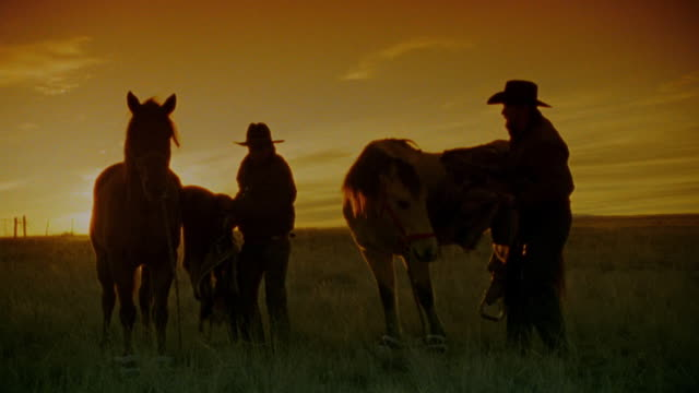 pan silhouette 2 cowboys unsaddling horses + walking towards camera on plain at sunset / new mexico - plain stock videos & royalty-free footage