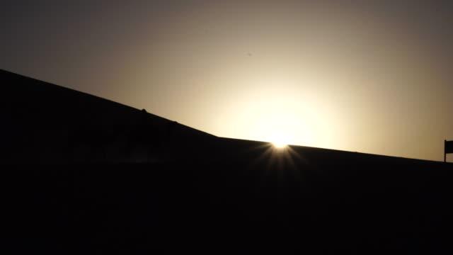 vidéos et rushes de silhouette: camels walking on desert at sunset - dune de sable