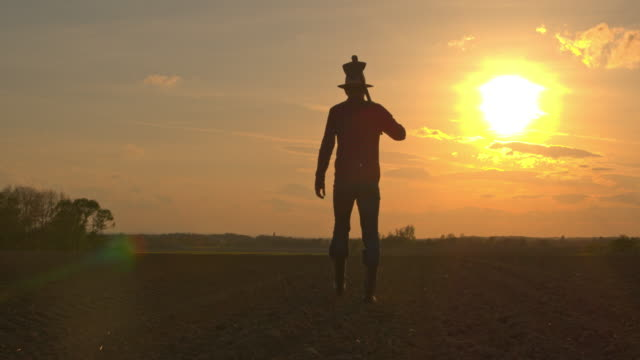 ms silhouette farmer carrying hoe in idyllic,rural plowed field at sunset - produttore video stock e b–roll