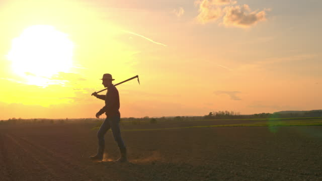 ms silhouette farmer carrying hoe in idyllic,rural plowed field at sunset - in silhouette stock videos & royalty-free footage