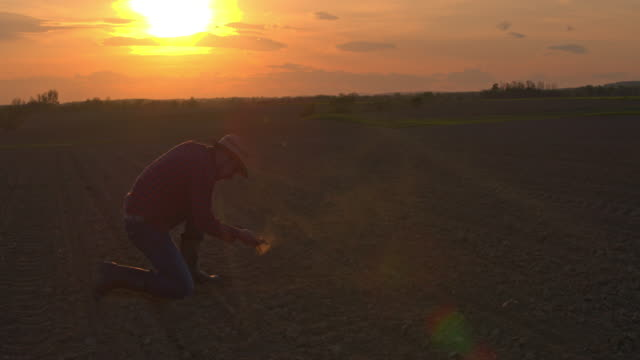 ms silhouette farmer in idyllic,rural plowed field at sunset - kneeling stock videos & royalty-free footage