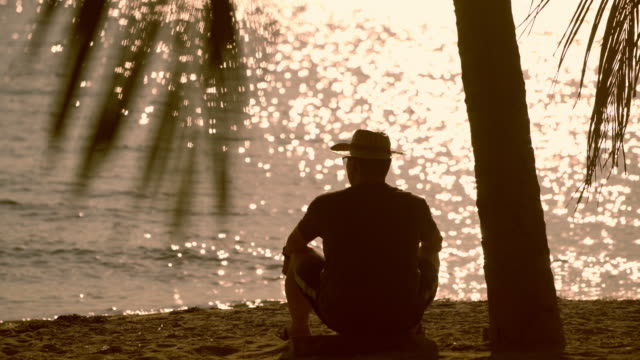 silhouette - lonely man using under the heat of the sun on a beach - fan palm tree video stock e b–roll