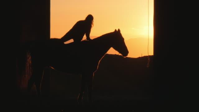 vídeos de stock e filmes b-roll de silhouette of caucasian woman and horse in stable - só mulheres de idade mediana