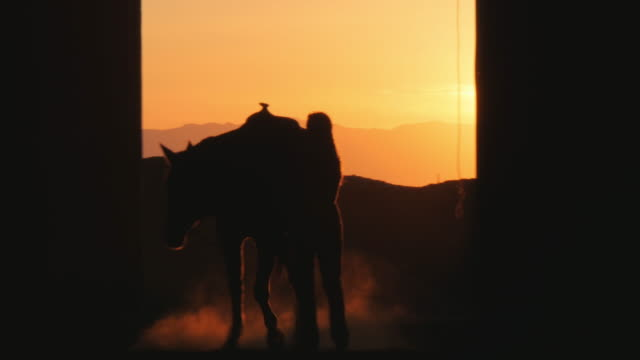 vídeos y material grabado en eventos de stock de silhouette of caucasian woman and horse in stable - establo