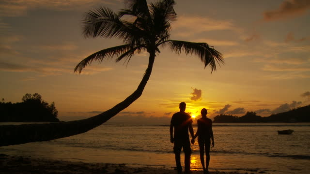 WS Silhouette of couple standing on beach at sunset / Seychelles