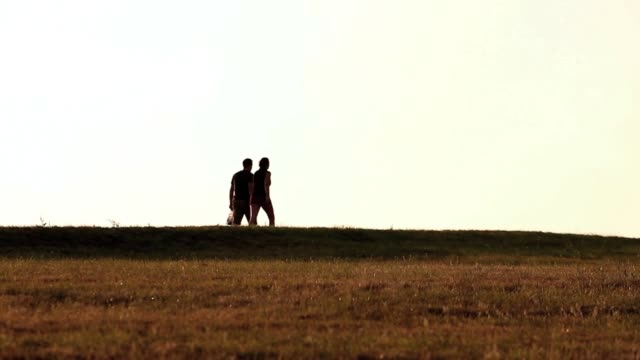 silhouette of couple walking along horizon at sunset - two people stock videos & royalty-free footage