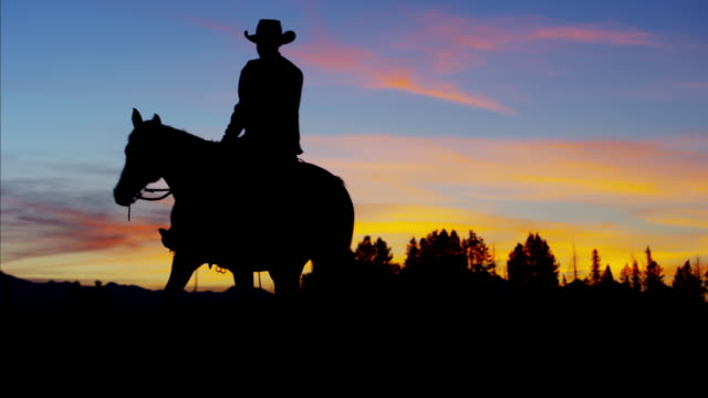 Silhouette of Cowboy Rider forest wilderness area Canada