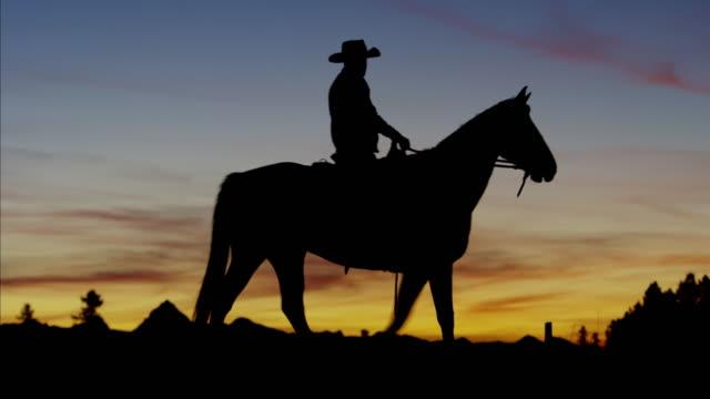 Silhouette of Cowboy Rider in sunrise wilderness Canada