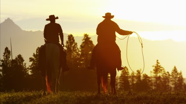 vídeos y material grabado en eventos de stock de silhouette of cowboy riders forest wilderness area canada - lazo nudo
