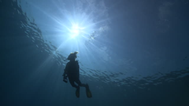 Silhouette of diver during Safety Stop, with sunburst, Vaavu Atoll, The Maldives