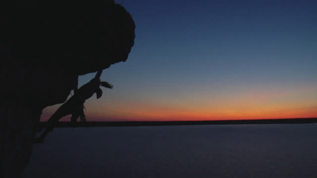 ws silhouette of female climber against sunset sky, lion's head, ontario, canada - silhouette stock videos & royalty-free footage