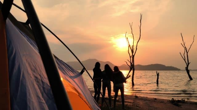 vídeos de stock, filmes e b-roll de silhueta dos amigos que acampam bebendo, acampando, férias de verão e conceito das férias. camping - barraca