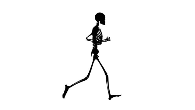 silhouette of human skeleton running | loopable - biomedical illustration stock videos & royalty-free footage