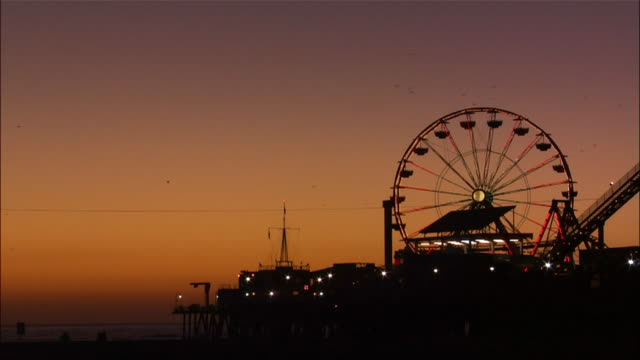 silhouette of illuminated ferris wheel at santa monica pier. - 数匹の動物点の映像素材/bロール