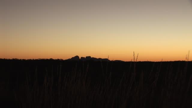 WS Silhouette of Kata Tjuta at sunrise, Uluru-Kata Tjuta National Park, Northern Territory, Australia