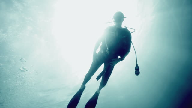 ms la silhouette of man diving in caribbean sea / nassau, new providence, bahamas  - scuba diving stock videos & royalty-free footage