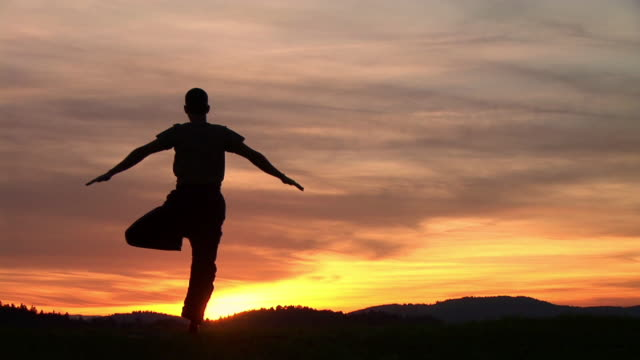 WS, Silhouette of man performing yoga against sky at sunset, rear view, Ljubljana, Slovenia